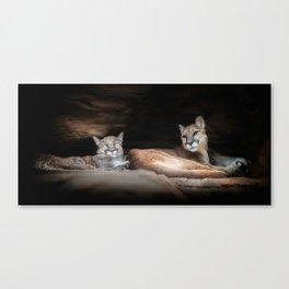 Cougar Town Canvas Print