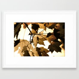 Leave it out. Framed Art Print