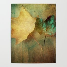 Rustic Beauty Poster
