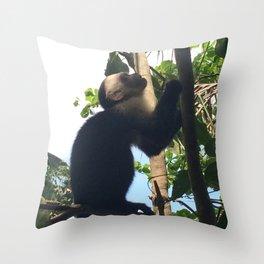 Costa Rica Monk Throw Pillow