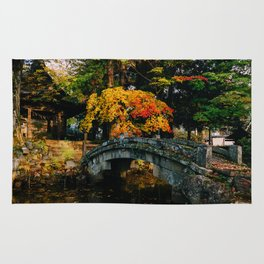 Takayama Colors Rug