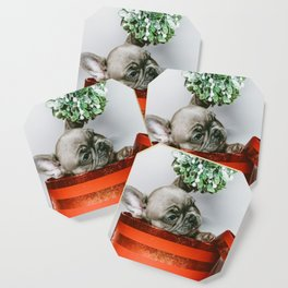 Christmas Pup in a Present with Mistletoe (Color) Coaster