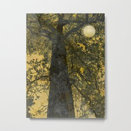 Pecan Tree and Moon Metal Print