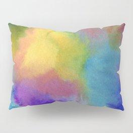 Colour or Color Pillow Sham