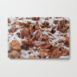 Iced Earth Metal Print