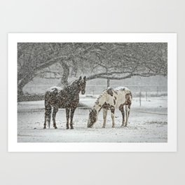 2 Horses under a tree in winter Art Print