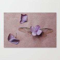 Cicada :: Hydrangea Canvas Print