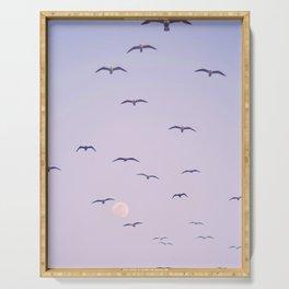 Seagulls & Moon by Murray Bolesta Serving Tray