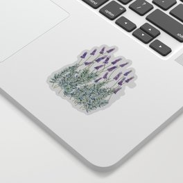 Lavender, Illustration Sticker