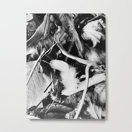 Autumn Leaves & Feather Metal Print
