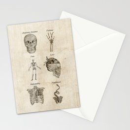 Anatomy lessons Stationery Cards