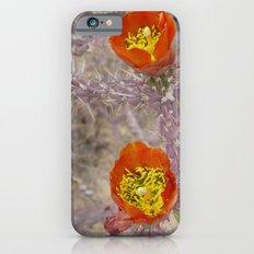 Pencil cholla in flower iPhone 6s Slim Case