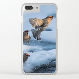 Bohemian Waxwing Splash Clear iPhone Case