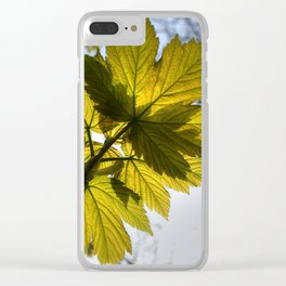 Reach For The Light Clear iPhone Case