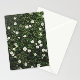 Daisies in Letchworth Stationery Cards