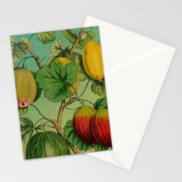 Gooseberry Branch Stationery Cards