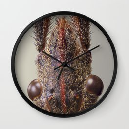 Western Conifer Seed Bug Wall Clock