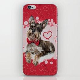 Cute Schnauzer on Hearts Pattern iPhone Skin