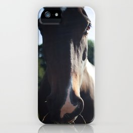 """""""Munchy"""" the Horse iPhone Case"""
