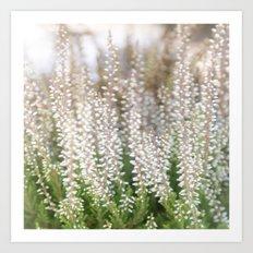Whitegreen Art Print