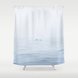 Whale Watching, Mirissa, Sri Lanka Shower Curtain