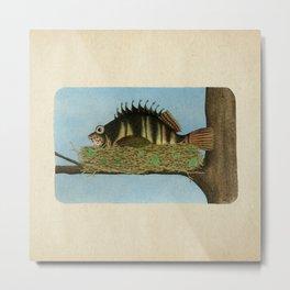 Hawkfish Metal Print