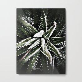 Spiky cactus Metal Print