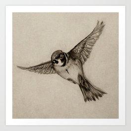 Aviation Art Print