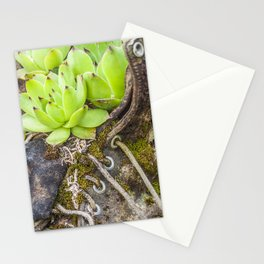 Vintage Garden Boots Stationery Cards