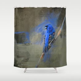 Royal One Shower Curtain