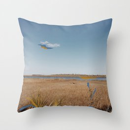 Low Country River Throw Pillow