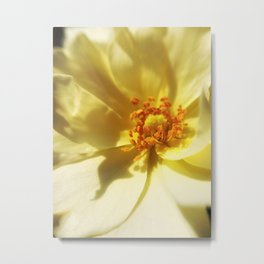 Angel's Flower Metal Print