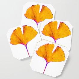 ginkgo biloba leaf Coaster