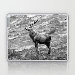 Stag b/w Laptop & iPad Skin