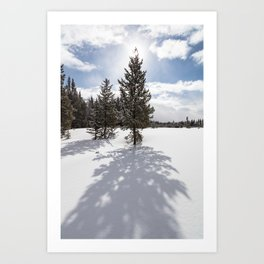 Gardners Hole, Yellowstone National Park Art Print