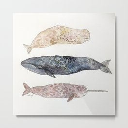 Watercolor Stacked Whales  Metal Print