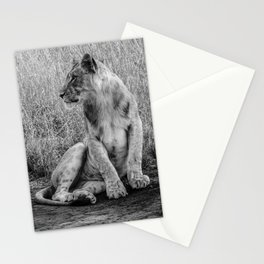 Pensive Lion Stationery Cards