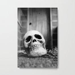 Pathway Metal Print