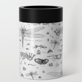 Braf insects Can Cooler