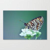 sofa Canvas Prints featuring flower sofa by LindaMarieAnson