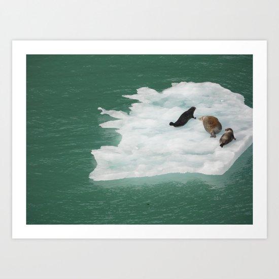 Seals on an Iceberg Art Print