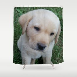 Whatever you want Lab puppy Shower Curtain