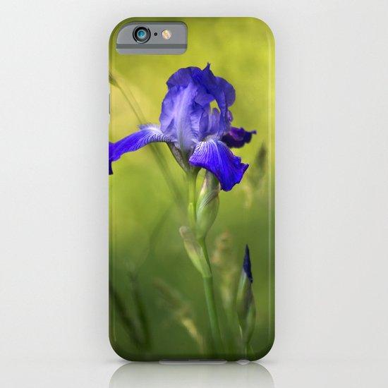 Violet Iris Flower iPhone & iPod Case
