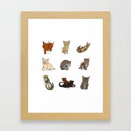 Kittens Worldwide Framed Art Print