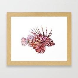 Ocean Dream - Lion Fish Framed Art Print