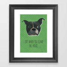Boston Terrier Print Framed Art Print