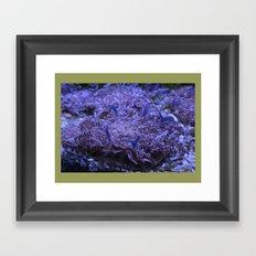 Adventure DPG150604a Framed Art Print