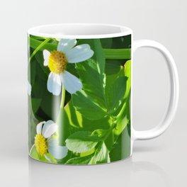 Nodding Beggar-Ticks 2 Coffee Mug