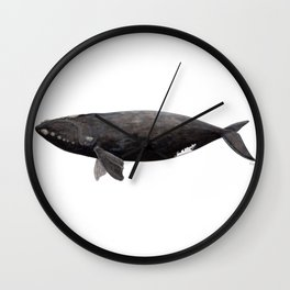 Northern right whale (Eubalaena glacialis) Wall Clock