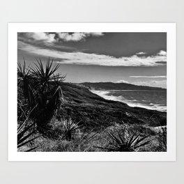 Torrey Pines Art Print